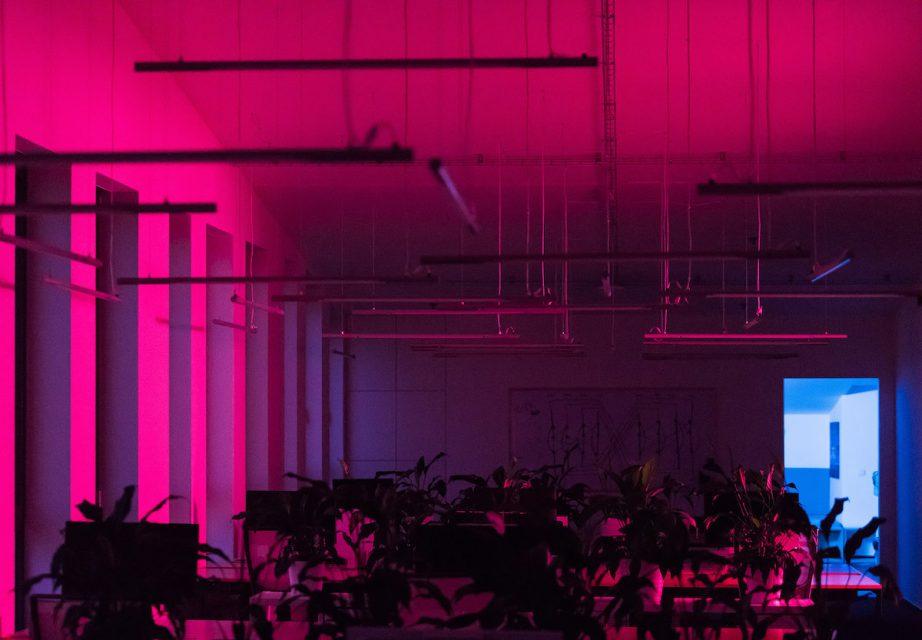 Neony dodají prostoru večer a v noci jinou atmosféru